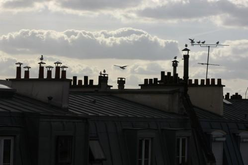 Hotel Le Quartier Bercy Square - Sky View